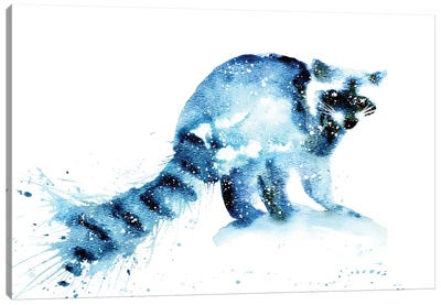 Cosmic Raccoon Canvas Art Print