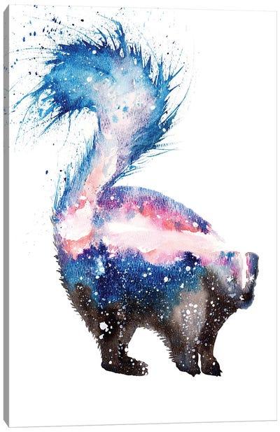 Cosmic Skunk Canvas Art Print