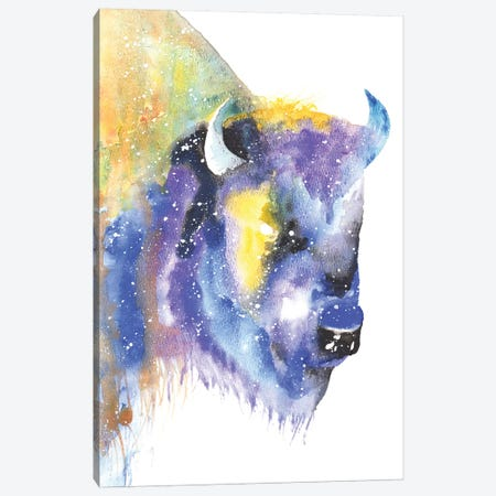 Cosmic Bison Canvas Print #TCA7} by Tanya Casteel Canvas Art