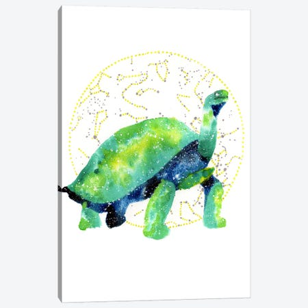 Cosmic Tortoise Canvas Print #TCA85} by Tanya Casteel Canvas Art Print