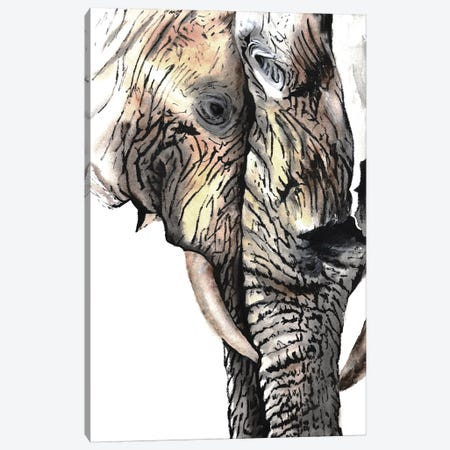 Elephants Canvas Print #TCA90} by Tanya Casteel Canvas Print