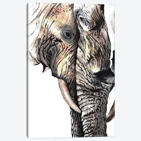 Elephants Canvas Print #TCA90} by Tanya Casteel Canvas Print