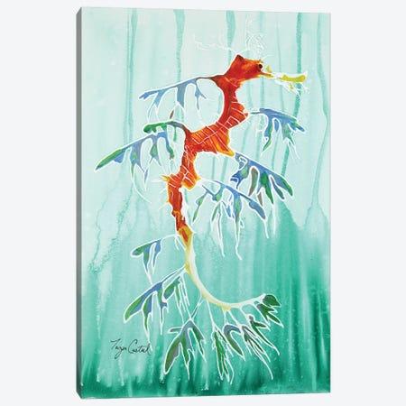 Leafy Sea Dragon Canvas Print #TCA92} by Tanya Casteel Canvas Art Print