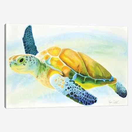 Sea Turtle Canvas Print #TCA95} by Tanya Casteel Canvas Art