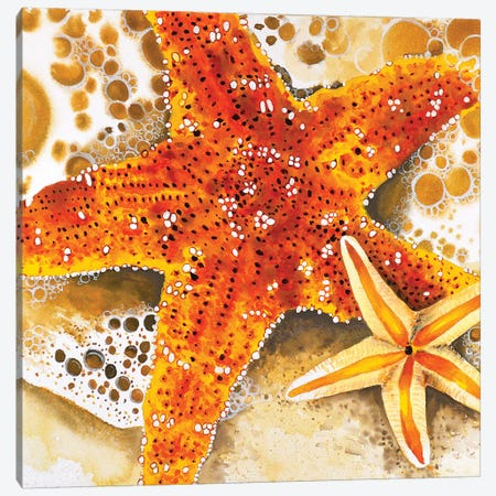 Starfish Canvas Print #TCA96} by Tanya Casteel Canvas Art