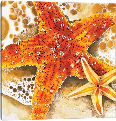 Starfish Canvas Art Print