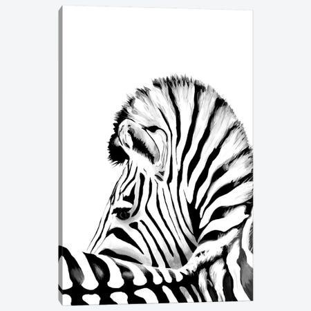 Zebra Canvas Print #TCA97} by Tanya Casteel Canvas Wall Art
