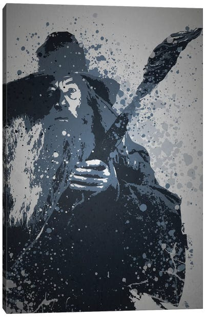 Wizard Canvas Art Print