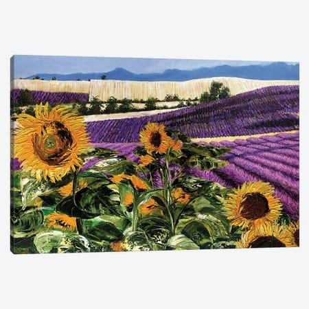 Sunflowers And Lavender Canvas Print #TCK104} by Malenda Trick Art Print