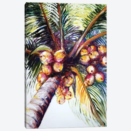 Coconut Palm Canvas Print #TCK41} by Malenda Trick Canvas Artwork