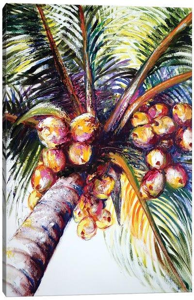 Coconut Palm Canvas Art Print