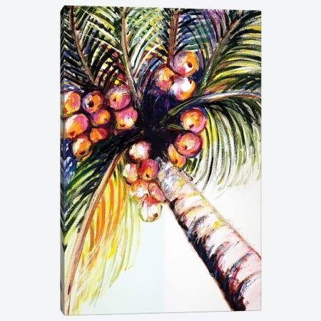 Coconut Palm II Canvas Print #TCK42} by Malenda Trick Canvas Art