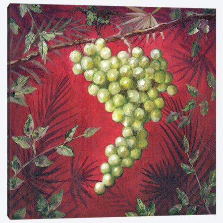 Sicillian Grapes I Canvas Print #TCK61} by Malenda Trick Canvas Art