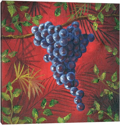 Sicillian Grapes II Canvas Art Print