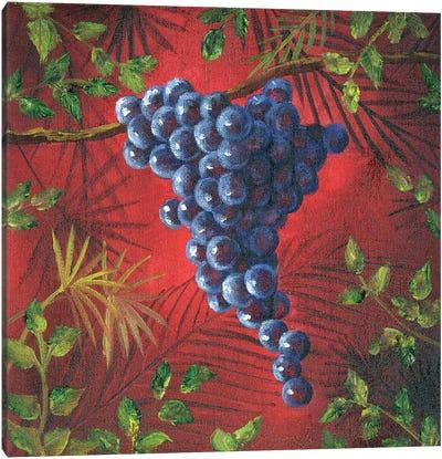 Sicillian Grapes II Canvas Art Print