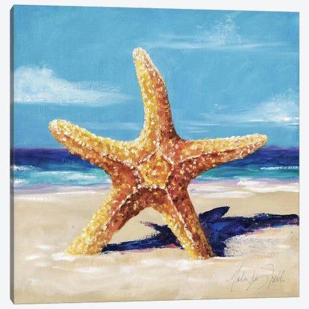 Star Canvas Print #TCK64} by Malenda Trick Canvas Print