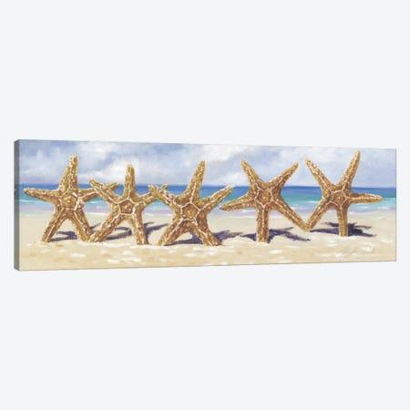 Starfish I  Canvas Print #TCK65} by Malenda Trick Canvas Print