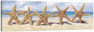 Starfish I  Canvas Art Print