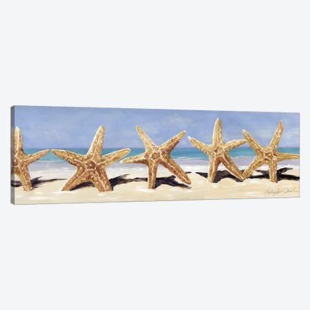 Starfish II Canvas Print #TCK66} by Malenda Trick Art Print