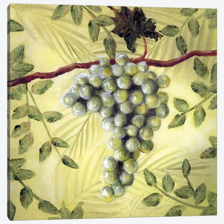 Sunshine Grapes II Canvas Print #TCK69} by Malenda Trick Canvas Artwork