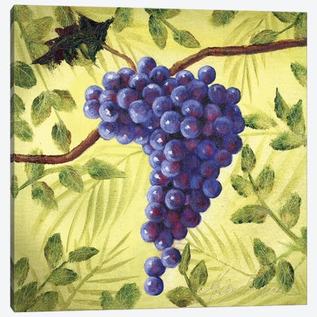 Sunshine Grapes III Canvas Print #TCK70} by Malenda Trick Art Print