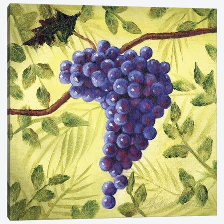 Sunshine Grapes III Canvas Print #TCK70} by Malenda Trick Art Print