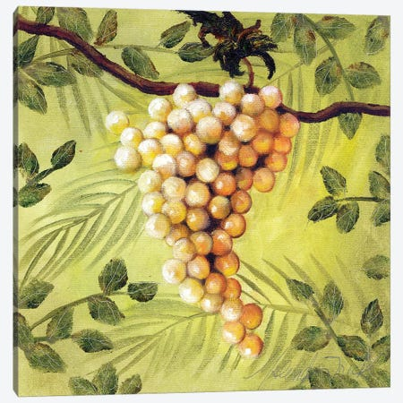 Sunshine Grapes IV Canvas Print #TCK71} by Malenda Trick Canvas Print