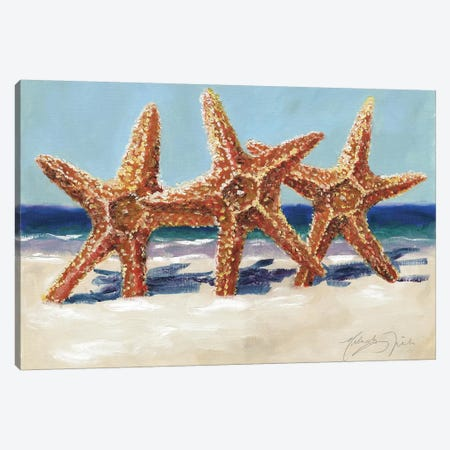 Three Starfish Canvas Print #TCK78} by Malenda Trick Art Print