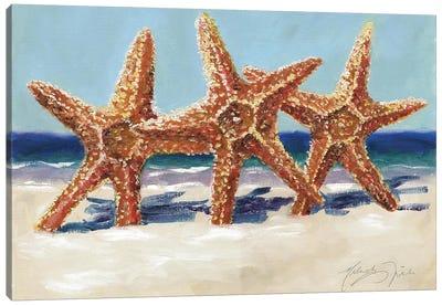 Three Starfish Canvas Art Print