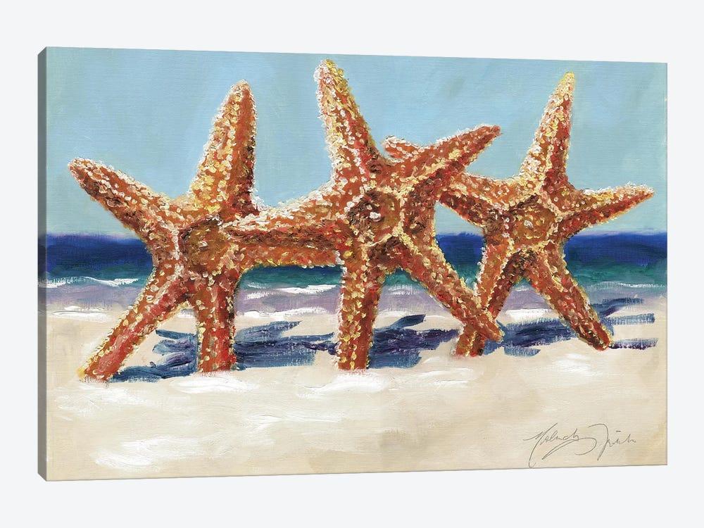 Three Starfish by Malenda Trick 1-piece Canvas Artwork