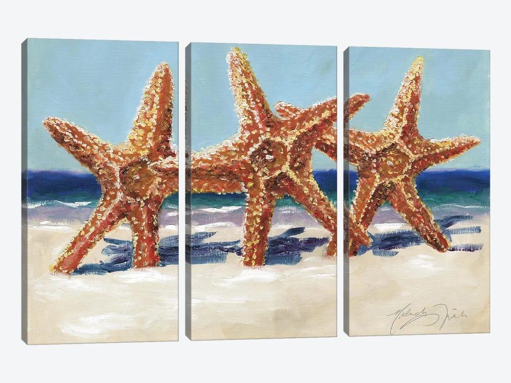 Three Starfish by Malenda Trick 3-piece Canvas Wall Art