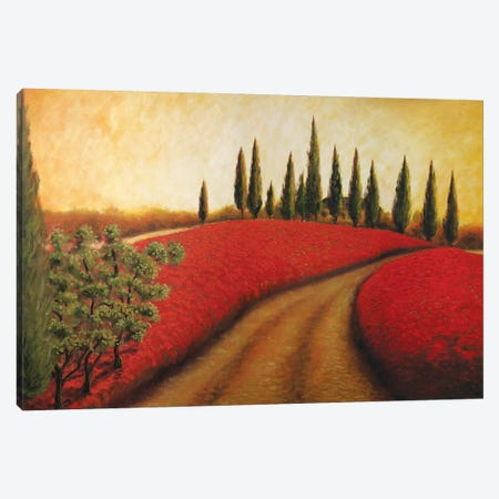Tuscan Path I  3-Piece Canvas #TCK80} by Malenda Trick Canvas Art