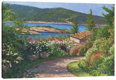 Clear Morning Canvas Art Print