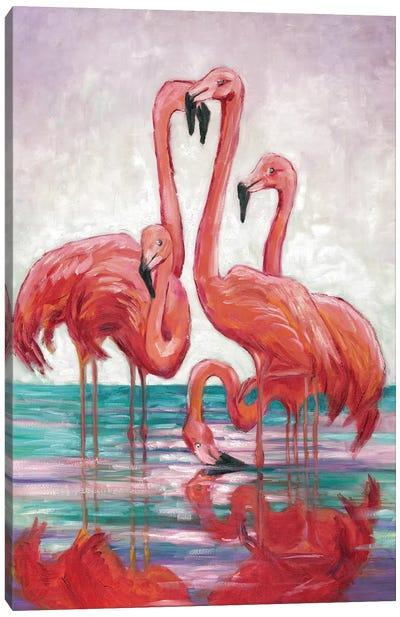 Five Flamingos Canvas Art Print