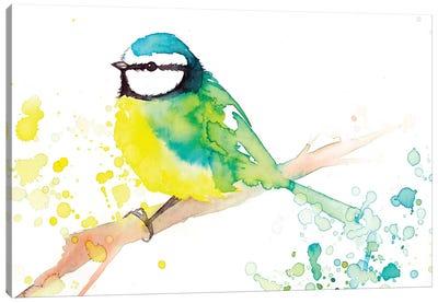 Green Bird Canvas Art Print