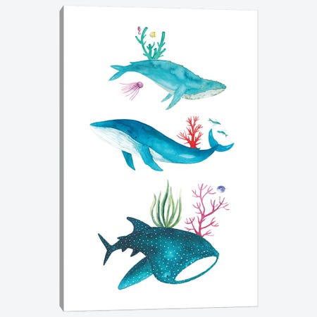 Ocean Creatures 3-Piece Canvas #TCW26} by The Cosmic Whale Canvas Art Print