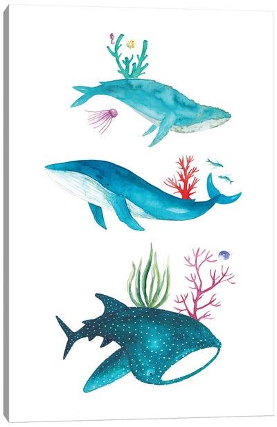 Ocean Creatures Canvas Art Print
