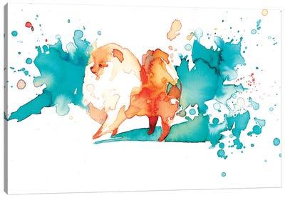 Pomi II Canvas Art Print