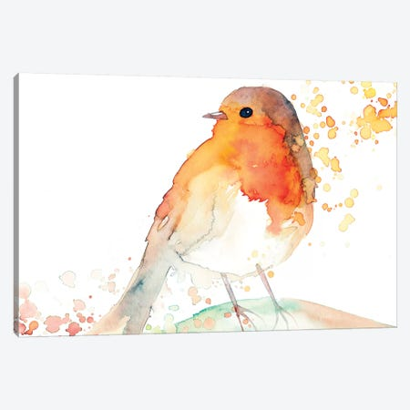 Robin Bird Canvas Print #TCW34} by The Cosmic Whale Canvas Art