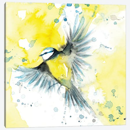 Tit Blue Bird Canvas Print #TCW39} by The Cosmic Whale Canvas Art Print