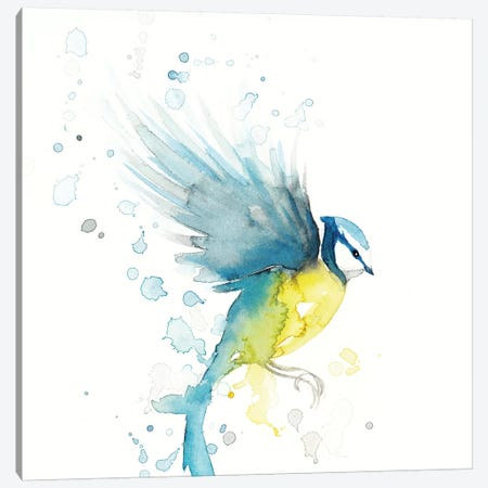 Blue Tit Bird II Canvas Print #TCW3} by The Cosmic Whale Canvas Artwork