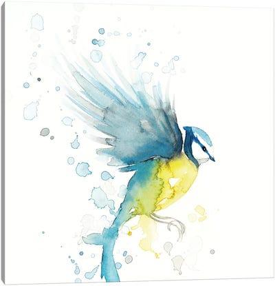 Blue Tit Bird II Canvas Art Print