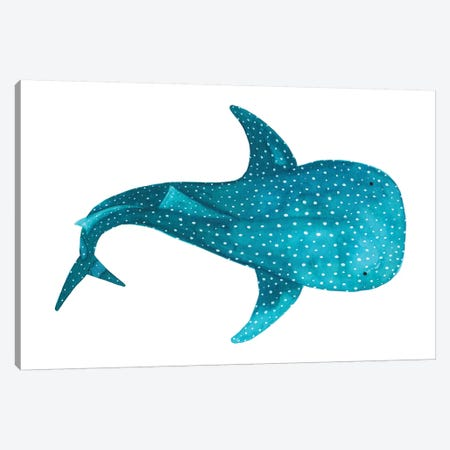 Whale Shark II Canvas Print #TCW46} by The Cosmic Whale Art Print