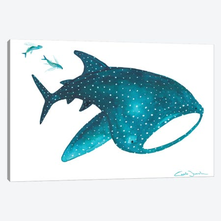 Whale Shark And Fishes Canvas Print #TCW47} by The Cosmic Whale Canvas Print