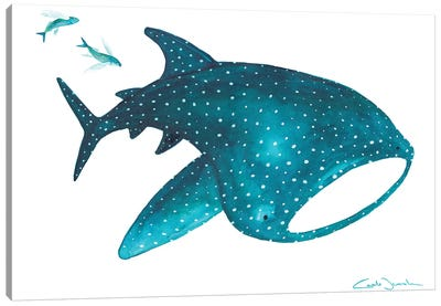 Whale Shark And Fishes Canvas Art Print