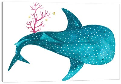 Whale Shark With Coral Canvas Art Print