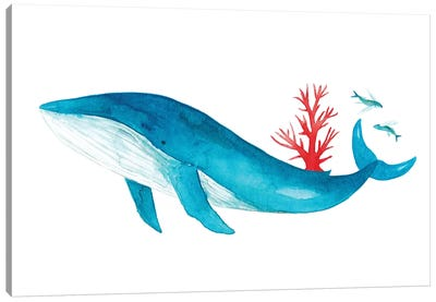 Blue Whale With Coral Canvas Art Print