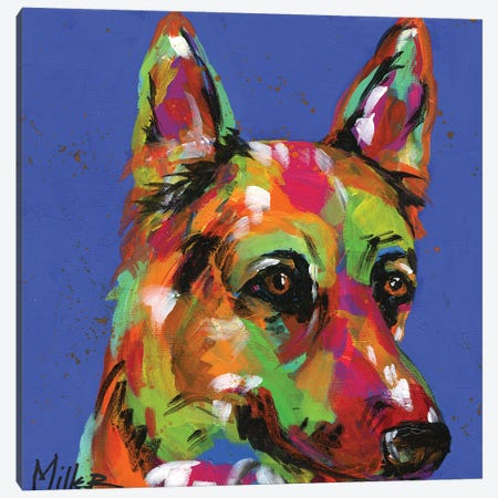 Shy Shepherd Canvas Print #TCY11} by Tracy Miller Canvas Print