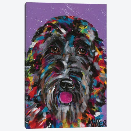 Labradoodle Canvas Print #TCY143} by Tracy Miller Canvas Art
