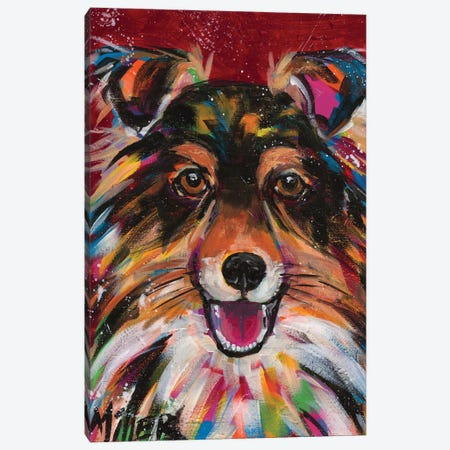 Sheltie Smile Canvas Print #TCY145} by Tracy Miller Canvas Print